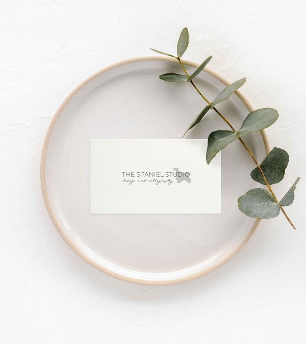 TheSpanielStudio_Branding